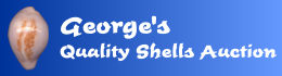 www.george-shellsauction.com